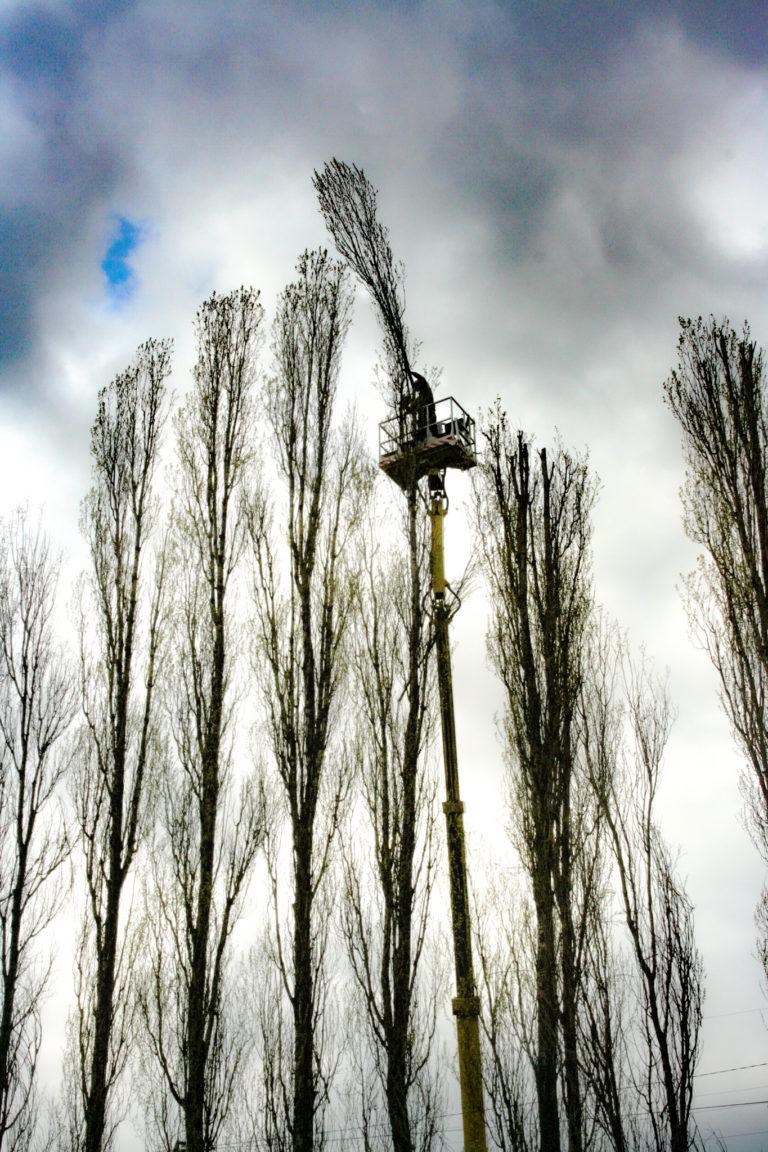 alptrek prace na wysokosci (1)