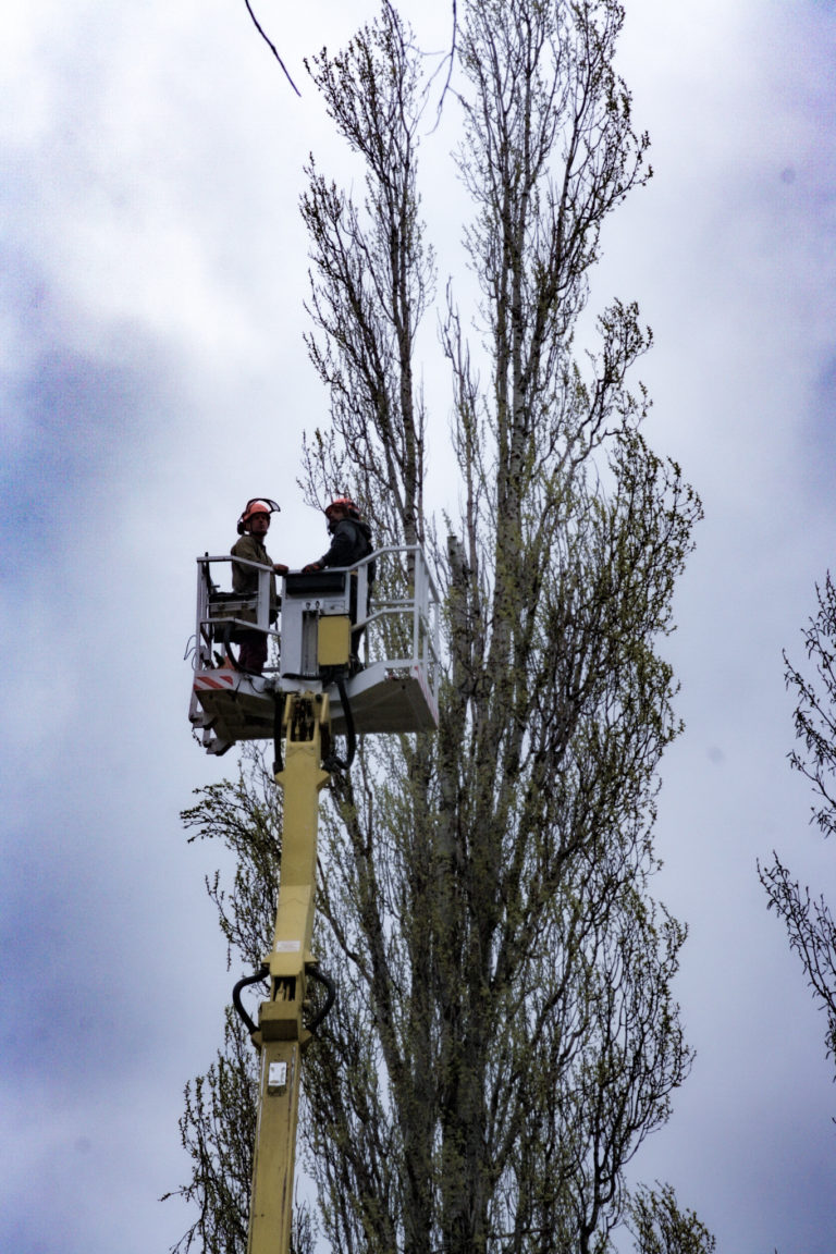 alptrek prace na wysokosci (2)