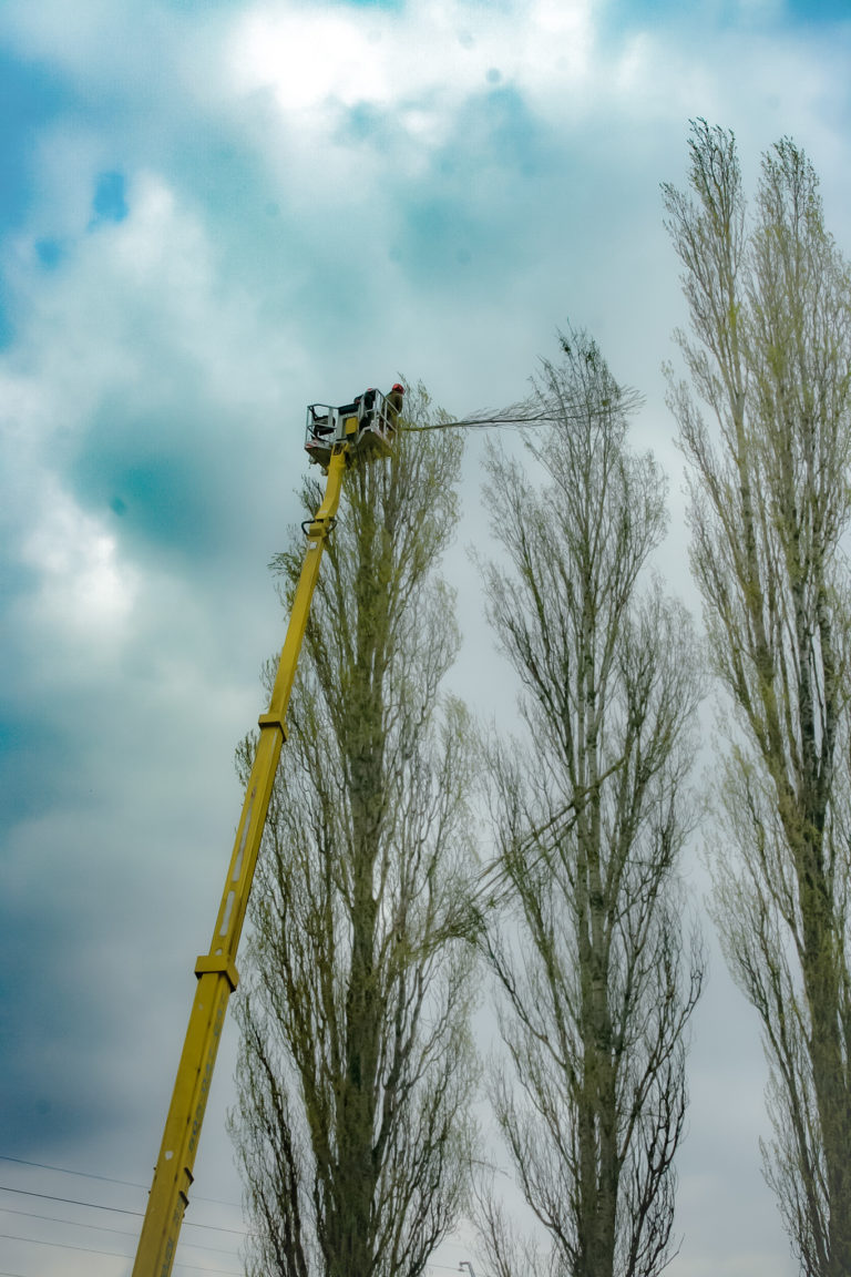alptrek prace na wysokosci (3)